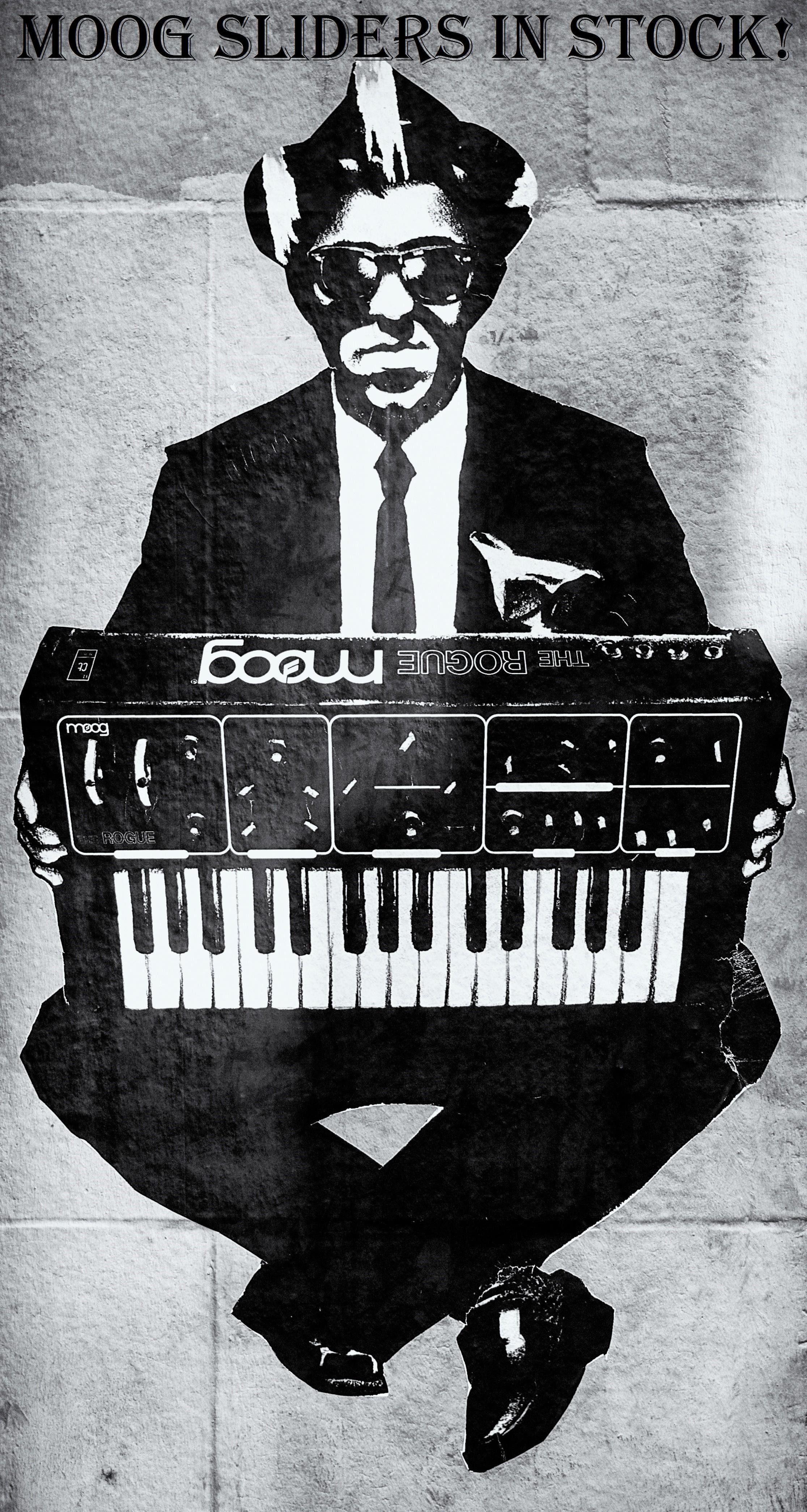 Moog The Rogue